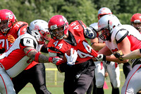Cottbus Crayfish @ Spandau Bulldogs